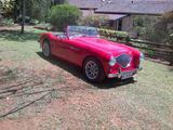 1995 Austin Healey 100