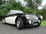 1955 Austin Healey 100 Green white Peter Linn