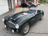 1957 Austin Healey 100 Six