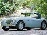 1953 Austin Healey 100 Grey Michael Salter