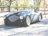 1955 Austin Healey 100 Dead Rat Flat Black Scott T