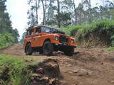 1981 Land Rover Series III Orange oryza greviela